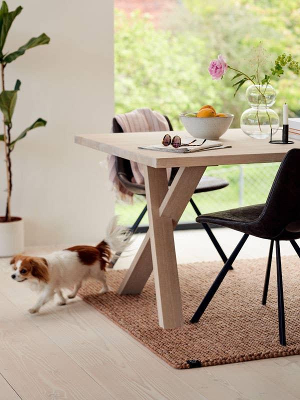 Om du for eksempel har en vofs i hus, kan det være greit å velge slitesterke sofa og gulvtepper som enkelt kan rengjøres.