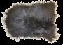 Islandsk villsau skinn 60x90