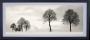 Bilder/Reproduksjoner Winterlight 100x40 cm